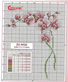 ♥ My point Graphs Cruz ♥: Flowers: Fine Orchids in Cross Stitch Just Cross Stitch, Beaded Cross Stitch, Cross Stitch Borders, Cross Stitch Baby, Cross Stitch Flowers, Cross Stitch Charts, Cross Stitch Designs, Cross Stitching, Cross Stitch Embroidery