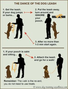 Good training info to get ready for a walk - sofie