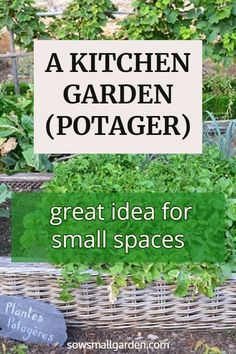 Want to learn how to start a kitchen garden (potager)? Then read this article. Want to learn how to start a kitchen garden (potager)? Then read this article. Diy Herb Garden, Herb Garden Design, Potager Garden, Garden Trellis, Edible Garden, Vegetable Garden, Garden Plants, Garden Ideas, Growing Herbs