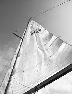 I want to sail along the east coast