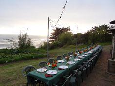Farm to table outdoor dinner #farmtotable #localfood