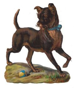Victorian Die Cut Scrap Dog with a Ball