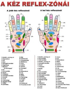 Kéz Goal Charts, Acupressure Treatment, Nerve Pain, Healthier You, Natural Home Remedies, Massage Therapy, Natural Medicine, Healthy Life, Herbalism