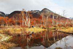 Fall in Ushuaia, Argentina