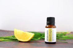 essential oils mosquito