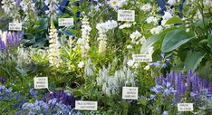 Every beautiful cottage garden has common principles that make them a success. Learn about the fundamentals you need to create your very own cottage garden. Flower Garden Plans, Garden Tool Set, Love Garden, Dream Garden, Garden Leave, Cottage Garden Plants, Garden Beds, Backyard Cottage, Rustic Backyard
