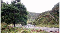 São Miguel - Lagoa, Lagoa do Fogo, Ribeira Grande e Furnas. #Açores #Azores