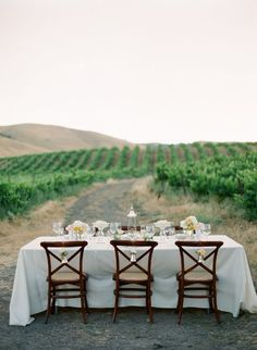 Lunch in the vineyard.