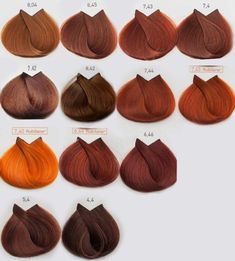 Loreal Color Scheme to choose your Hair Color Loreal Professionnel color chart - Red Hair Hair Color Auburn, Hair Color Dark, Brown Auburn Hair, Red Copper Hair Color, Brown Blonde Hair, Brunette Hair, Orange Brown Hair, Long Red Hair, Dyed Natural Hair