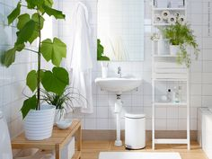 white and wood and green plants, bathroom inspiration from IKEA