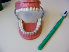 One set of large teeth, toothbrush and instructions available for dental/teeth/body storytime!