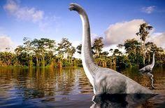 Dinosaurios: Información completa, reportajes y noticias