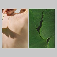 Diptych, natural, Cereal Magazine