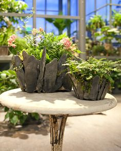 Stone Planters - from Martha Stewart - collect some flat rocks the next time you wander up the creek with the kids and create some really unique planters for your porch or garden.... Nice! Directions here....