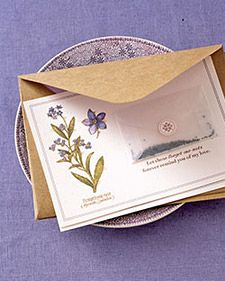 LOVE this idea of including seeds in with a card to help spread the love/cheer/delight!!