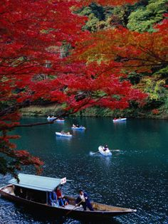 Boats with Tourists Showing Arashiyama's Autumn Colours, Kyoto, Japan                                by: Frank Carter