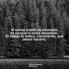 El miedo te indica lo que debes hacer. Motivational Phrases, Inspirational Quotes, Cool Words, Wise Words, More Than Words, Spanish Quotes, Good Thoughts, Love Letters, Writing Prompts