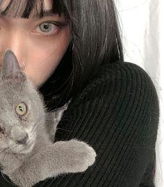 Pretty Korean Girls, Cat Aesthetic, Kawaii, Ulzzang Girl, Korean Beauty, Painting & Drawing, Asian Girl, Actors, Drawings