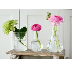 You don't need to spend a lot on fresh flowers to add a lovely pop of colour…just find some cute small glass containers, experiment and have fun! perfect size for the loo/wc/toilet/powder room….  ~ lab beaker vases from Natural Historyvia Bright Bazaar