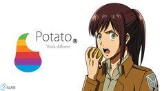 attack on titan wallpapers   potato girl - Attack on Titan Wallpaper