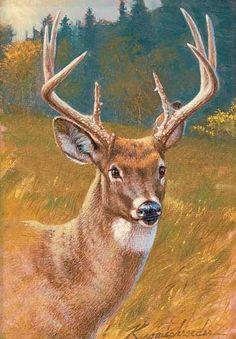 Buck Deer Painting