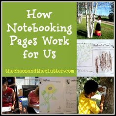 Organizing Notebooking Pages. Great ideas.