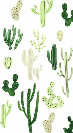 Cactus Wallpaper W/ Different Types Of Cactus In Different Shades Of Green  . This Cute, Fun, Wallpaper Is Adorable And Can Really Tie A Whole Look  Together!