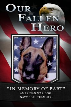 "REMEMBER FALLEN MEMBERS OF SEAL TEAM 6,  AND THEIR ""BART"" - THE GERMAN SHEPHERD CANINE - WE REMEMBER AND THANK YOU ALL!"