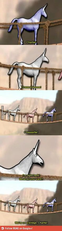 "The Unicorn. SecretAgentBob- Charlie The Unicorn.- ""We're on a bridge Charlie""SecretAgentBob- Charlie The Unicorn.- ""We're on a bridge Charlie"" Stupid Memes, Funny Memes, Hilarious, Candy Mountain Charlie, Charlie The Unicorn, Llamas With Hats, Have A Laugh, Just For Laughs, Laugh Out Loud"