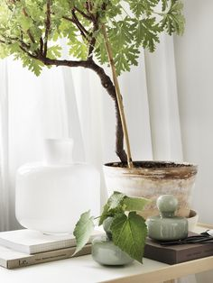Marimekko's Flower and Ming vases