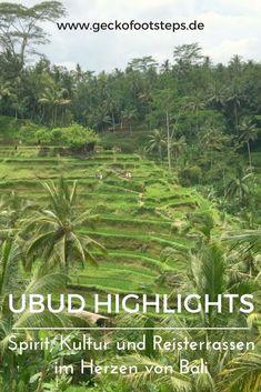 Ooh, Ubud. Wer hätte gedacht, dass ich meinen Lieblingsort auf Bali im Zentrum der Insel finde? Hier findest Du meine Ubud Highlights. #bali #ubud #indonesien #asien #reiseblogger