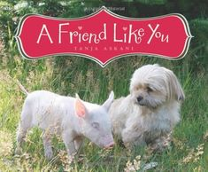 A Friend Like You by Tanja Askani - A good story to use when talking about friendship or about different animals. Has pictures of unusual animals like coati, stone martens, & a dormouse.