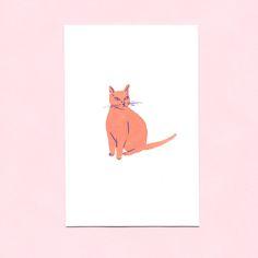 Image of Cat No. 37