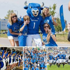 #UBuffalo. Are you ready to cheer on the #UBBulls? UB Athletics #HornsUpUB #good2beblue