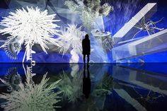 miguel chevalier generates a virtual reality of fractal flowers