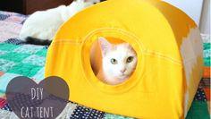 SUPER NÁPAD: - Vytvořte kočce stan z vlastního trička!