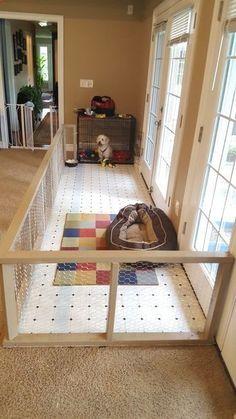 Pupy Training Treats - Custom Rescue Dog Pen More - How to train a puppy?