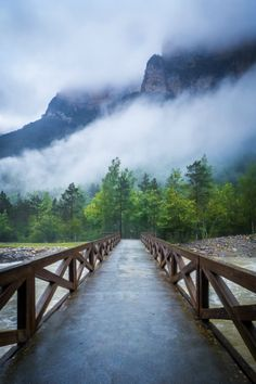 Pathway to the mountain by Clara Gamito