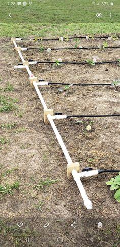 Greenhouse Gardening, Hydroponic Gardening, Farm Gardens, Small Gardens, Garden Watering System, Garden Irrigation System, Garden Sprinklers, Farmhouse Garden, Vegetable Garden Design