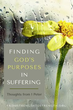 Suffering rarely makes sense from a human perspective. We can find comfort and hope by looking for God's purposes in our suffering. Hurt Heart, Gods Strength, Christian Motivation, May We All, Study Methods, Christian Post, Bible Love, Finding God, Let God