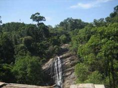Pictures of Attukal Images    http://www.hoparoundindia.com/kerala/city-guides/munnar.aspx