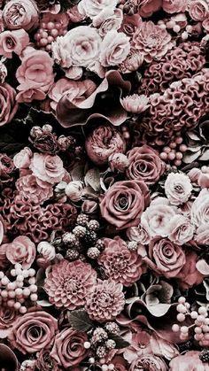 Aesthetic | Pinterest: @NinaRose15 ☆♡☆