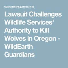 Lawsuit Challenges Wildlife Services' Authority to Kill Wolves in Oregon - WildEarth Guardians