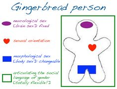 """cisnormativity:   Gingerbread Person. This is an anthropomorphic drawing of a gingerbread-style cut-out. This is used to illustrate the four discrete experiences of every person, whether trans or cis. The purple oval signifies neurological sex. Julia Serano refers to this as """"subconscious sex"""". These describe the same feature. Neurological sex is fixed in utero. People with a transsexual body have a neurological sex which is not on the same side as their morphological sex; people with a…"""