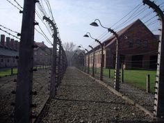https://flic.kr/p/5xQjk1 | Auschwitz I (Oświęcim) | Polonia (2008)  Las SS generalmente seleccionaban prisioneros, llamados kapos, para supervisar el resto. Todos los prisioneros del campo realizaban trabajos, y excepto en las fábricas de armas, el domingo se reservaba para limpieza, duchas y no se asignaba trabajo. Las durísimas condiciones de trabajo, unido a la desnutrición y poca higiene, hacían que la tasa de mortalidad entre los prisioneros fuera muy grande.