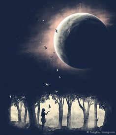 Moon.Birds.Nightsky.Peace
