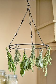 I WANT this rack!!! I have something similiar but it is MUCH bigger. Ends up it's at Williams Sonoma, $20 :D