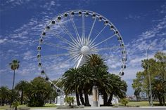 Another view of ferris wheel near Barrack Street Jetty, 10 November 2009 Wa Gov, Present Day, Capital City, Western Australia, Perth, Ferris Wheel, November, Fair Grounds, Street