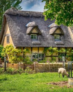 Thatched cottage in Broadway in the Cotswolds. Cozy Cottage, Cottage Living, Cottage Homes, Cottage Gardens, Cottages And Bungalows, Cabins And Cottages, Devon Cottages, Stone Cottages, Sims 4 House Plans