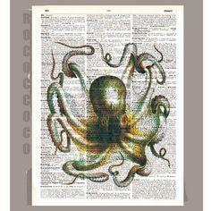 octopus for framing